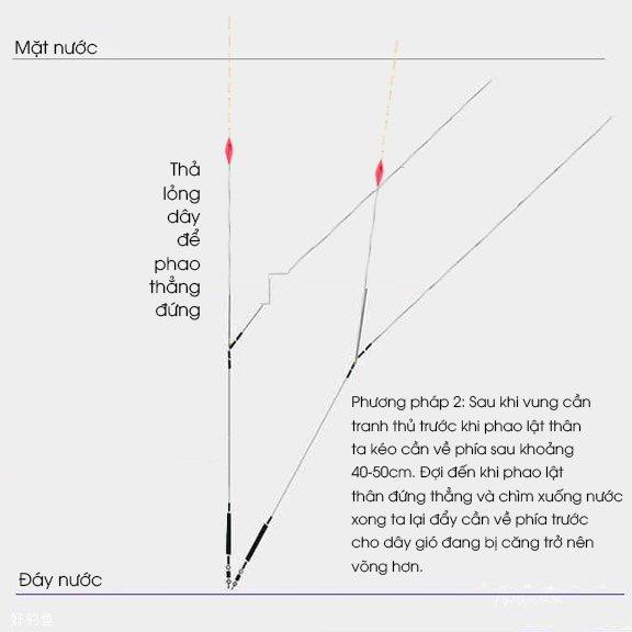 4 Bước chỉnh phao một cách chính xác